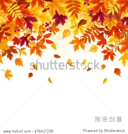 Vector background with red  orange  brown and yellow falling autumn leaves.