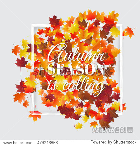 Typographic autumn season background with colorful maple leaves. Vector design for greeting card  poster  flyer.