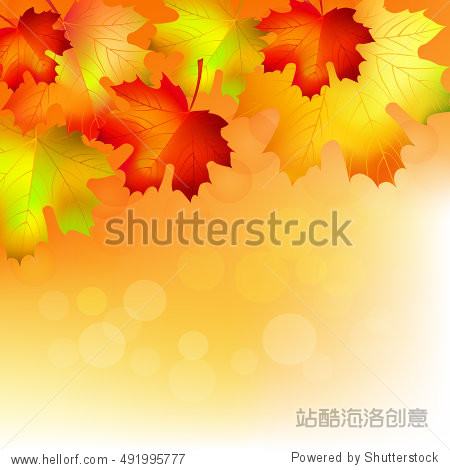 Autumn maple leaves on soft background. Vector illustration.