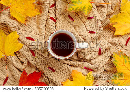 Cup of tea with autumn leaves on knitted plaid  top view