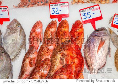 Fresh seafood variety for sale at fish market  Palma  Mallorca