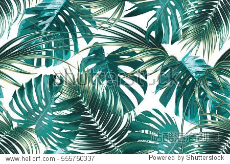 Tropical palm leaves  jungle leaf seamless vector floral pattern background