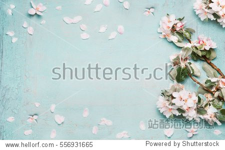 Spring nature background with lovely blossom in blue  pastel color  top view  banner. Springtime concept