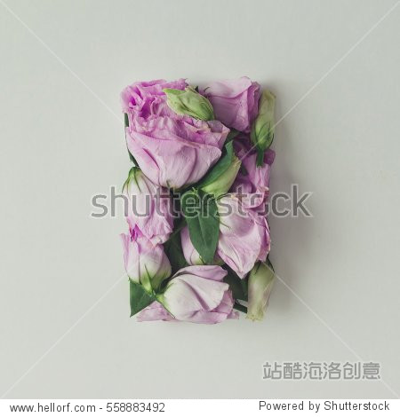 Pink flowers in shape of a gift box on bright background. Flat lay. Love concept.