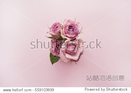 Bouquet of pink roses on a pink background. Top view
