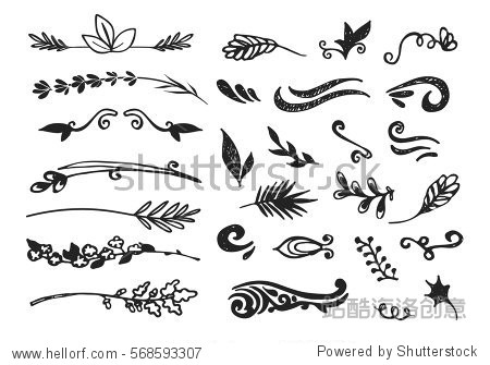 Hand drawn black floral elements on the white background. Floral decorative collection using for decoration of text  cards  invitation. Sketch of leaves and flowers.
