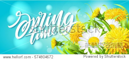 Inscription Spring Time on fresh spring background with grass  dandelions and daisies. Vector illustration