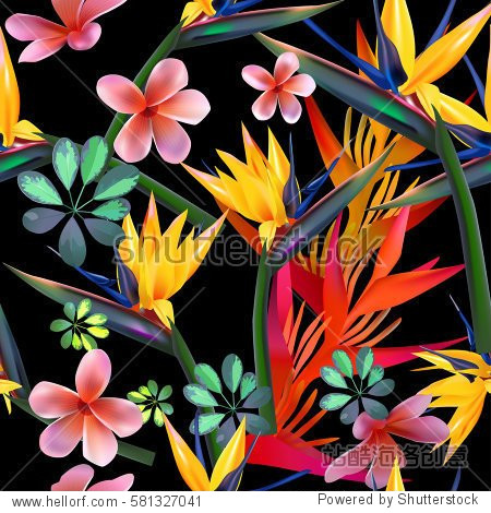 Vector seamless pattern  of tropical  flowers  leaves  vines:  Strelitzia  Plumeria  South America  Central Africa  Southeast Asia and Australia. Monsoon forests  Mangroves.For textiles