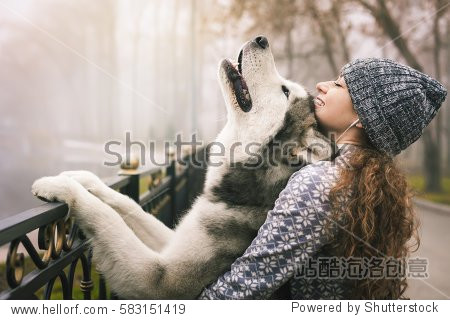 Image of young girl with her dog  alaskan malamute  outdoor at autumn or winter. Domestic pet. Husky