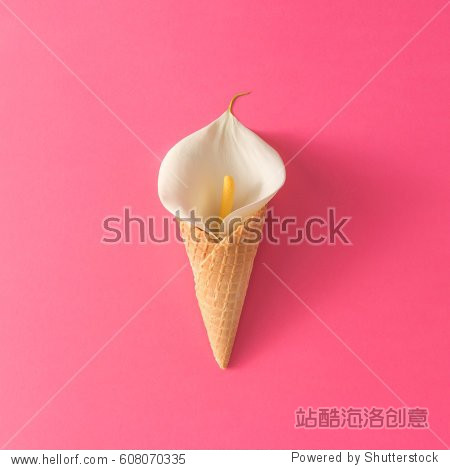 Ice cream cone with calla lily flower on pink background. Flat lay. Minimal summer concept.