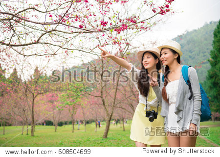 Japanese woman point with friends during spring travel in japan. Asian girls sightseeing cherry blossom happy in korea. Beautiful blooming sakura avenue background in taiwan.