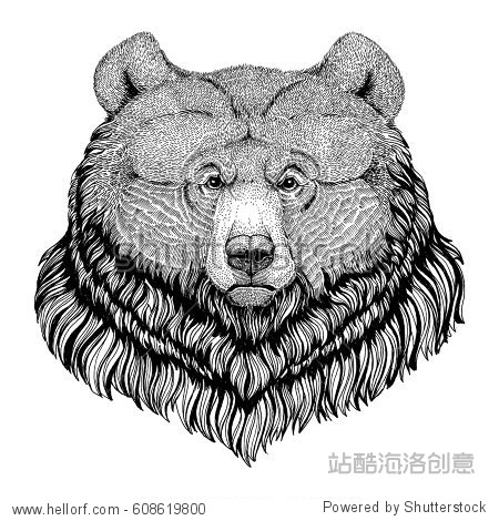 Grizzly bear Hipster style animal Image for tattoo  logo  emblem  badge design