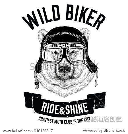 Vintage images of bear for t-shirt design for motorcycle  bike  motorbike  scooter club  aero club