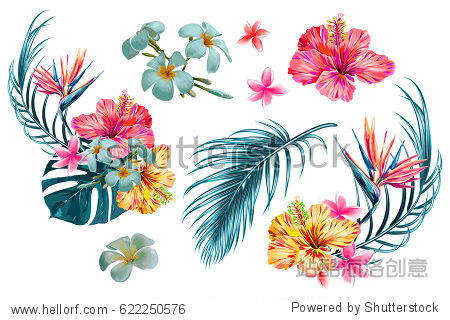 Tropical flowers  palm leaves  jungle leaf  bird of paradise flower  hibiscus. Vector exotic illustrations  floral elements isolated  Hawaiian bouquet for greeting card  wedding  wallpaper