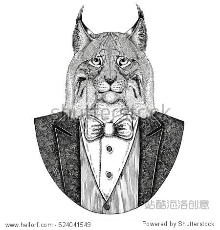 Wild cat Lynx Bobcat Trot Hipster animal Hand drawn illustration for tattoo  emblem  badge  logo  patch  t-shirt