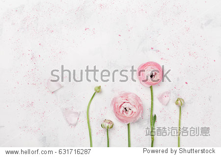 Beautiful pink ranunculus flowers on white table top view. Floral border in pastel color. Wedding mockup in flat lay style.
