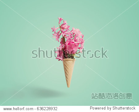 Flowers in a waffle cone on white background