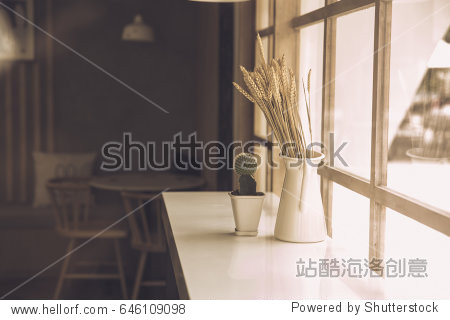 japan style cafe counter bar side glass window interior nature decoration with dried plant and cactus warm tone.