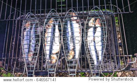 Sardines on the BBQ