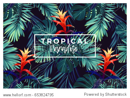 Floral horizontal postcard design with guzmania flowers  monstera and royal palm leaves. Exotic hawaiian vector background.