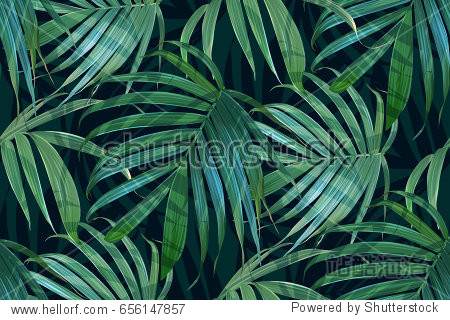Vector palm frond. Tropical leaves seamless pattern. Banana leaf background. Exotic design isolated. Hawaiian print. Jungle plants. Summer illustration.
