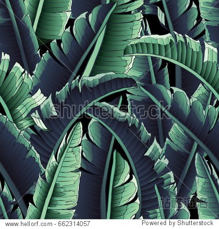 Seamless tropical pattern.   Banana Leaves palm tree illustration. Modern graphics.