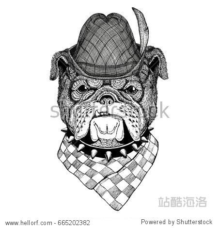 Bulldog Wild animal wearing tirol hat Oktoberfest autumn festival Beer fest illustration Bavarian beer festival