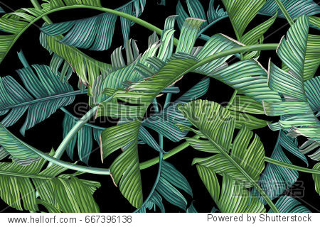 Tropical palm leaves. Vector seamless pattern on dark background.