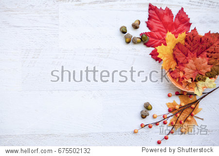Autumn Thanksgiving Background