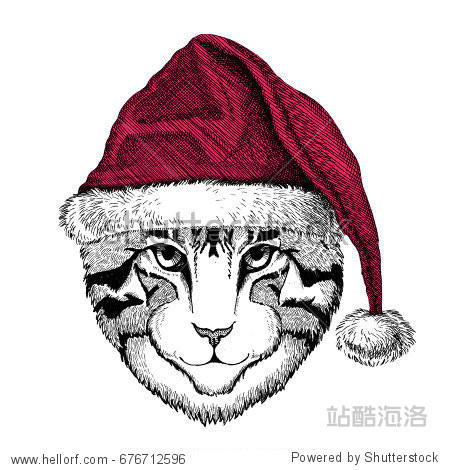 Image of domestic cat Christmas illustration Wild animal wearing christmas santa claus hat Red winter hat Holiday picture Happy new year
