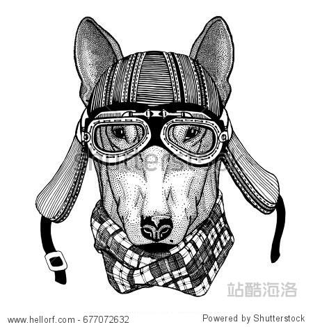 DOG for t-shirt design Wild animal wearing biker motorcycle aviator fly club helmet Illustration for tattoo  emblem  badge  logo  patch