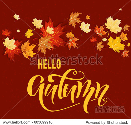 Autumn design with colorful maple leaves on dark background. Place for text. Hello autumn.