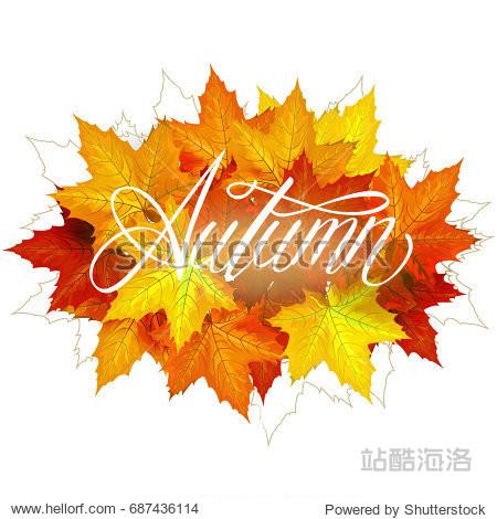 Beautiful hand drawn autumn foliage sale label  banner template. Lettering design. Fall leaf. illustration
