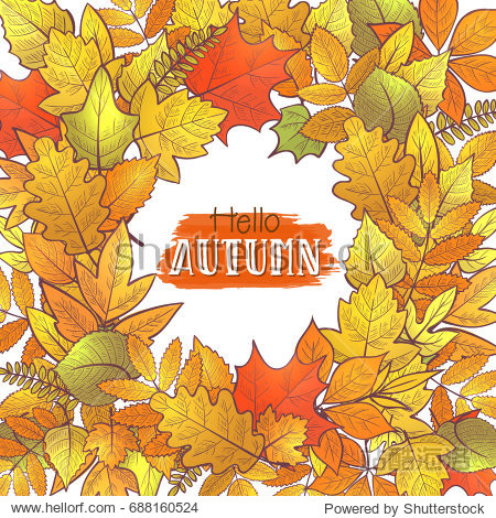 Background with colorful skeleton autumn leaves  hello autumn. Vector
