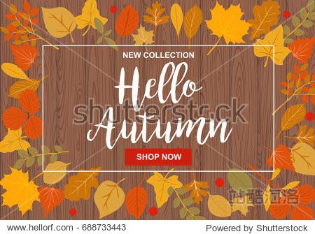 Hello autumn vector illustration with autumn leaves on dark wooden background