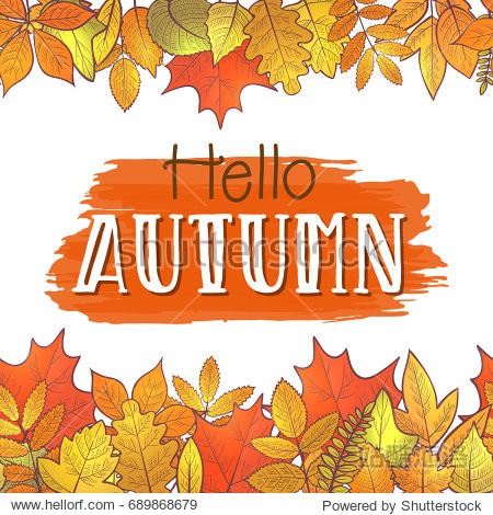 Seamless horizontal borders with colorful skeleton autumn leaves  hello autumn. Vector