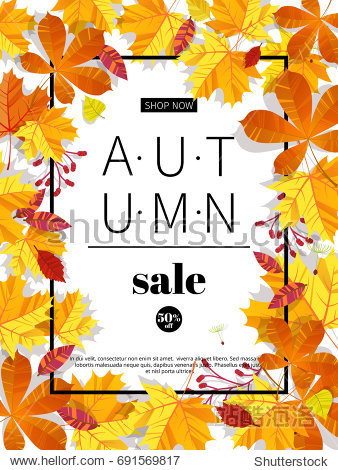 Autumn sale. Fall season sale and discounts banner. Colorful autumn leaves headline and sale invitation on white background. Vector illustration