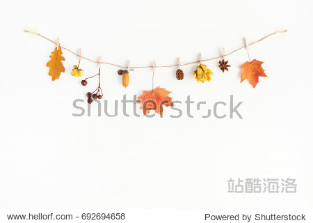 Autumn composition. Autumn flowers and leaves  acorn  pine cone  anise star. Flat lay  top view  copy space.