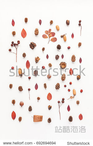 Autumn composition. Pattern made of autumn leaves  acorn  pine cones. Flat lay  top view.
