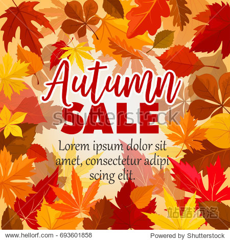 Autumn sale poster for September seasonal shopping. Vector background of maple  oak or elm and rowan tree leaf pattern of falling leaves for shop autumn promo offer design