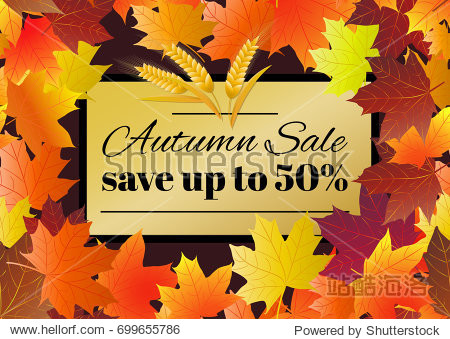 Autumn sale poster  flyer  card template with typography. Bright fall maple leaves  spica  rowanberry. Vector illustration.