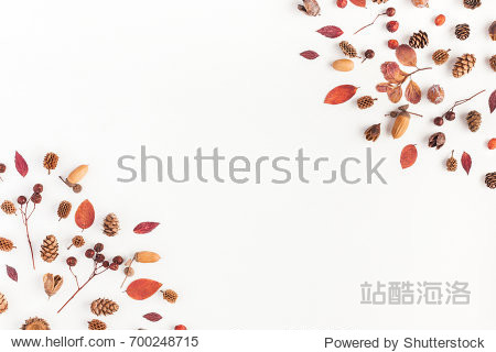 Autumn composition. Frame made of autumn leaves  acorn  pine cones on white background. Flat lay  top view  copy space