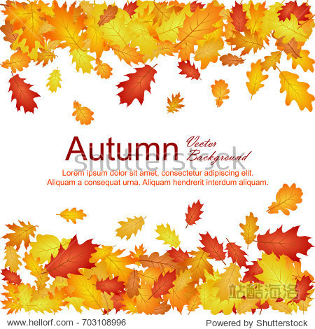 Horizontal borders of oak leaf abstract background seasonal vector illustration. Autumn leaves falling frame design. Fall season specific vector background. Oak tree autumn foliage border on white.