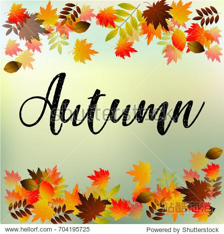 Autumn typographic. Fall leaf.  illustration
