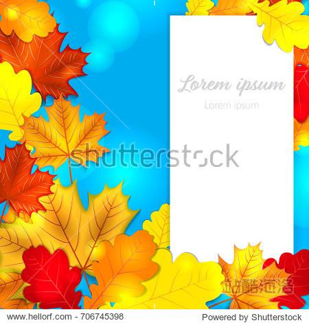 Autumn leaves oak maple blue background back to school