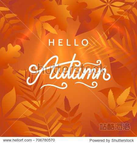 Hello autumn illustration. Abstract background with golden autumn leaves and bright sunlight. Hand drawn calligraphy. Applicable for banner  advertisement  poster  flyer. Vector eps 10.