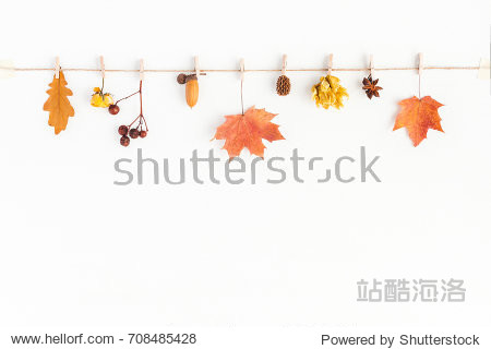 Autumn composition. Autumn flowers and leaves  acorn  pine cone  anise star. Flat lay  top view  copy space