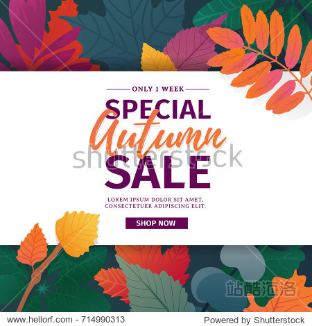 Template design discount banner for autumn season. Poster for special fall sale with flower and herb  autumnal leaf decoration. Layout  for offer and promotion on natural  floral background. Vector
