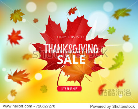 Stock vector illustration design Thanksgiving day sale with realistic maple leaves on sky background with falling motion blur autumn leaves design. Templates for post cards  banners  flyers  sale