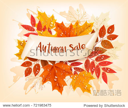 Vintage nature autumn sale background with colorful leaves and rain drops Vector